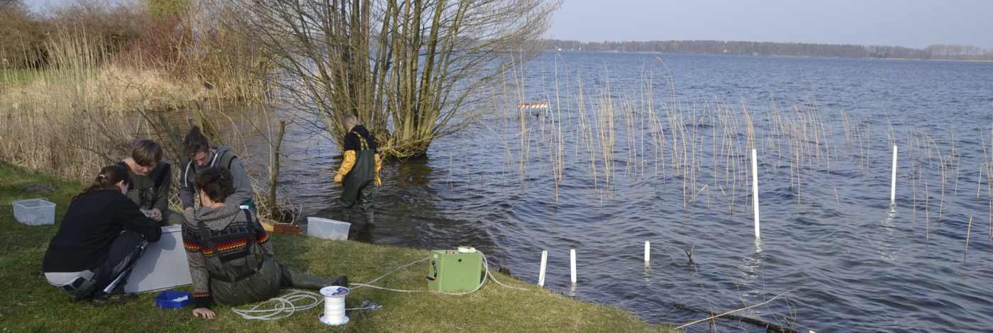 Studying groundwater-lake interactions at Lake Arendsee